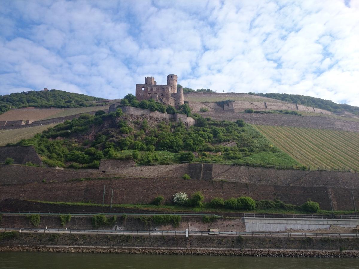 エーレンフェルス城 Burg Ehrenfels